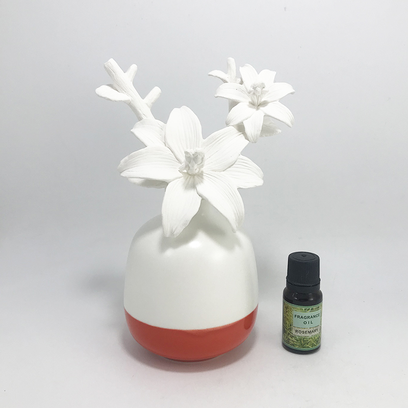 UK Customized ceramic flower diffuser with private label
